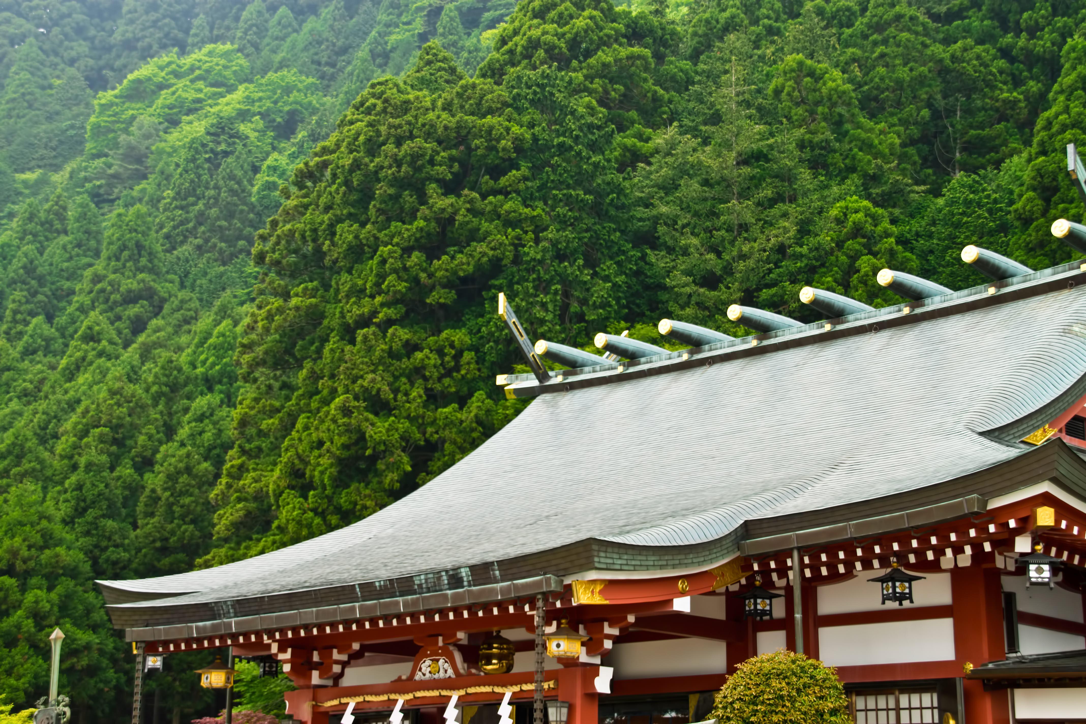 最近の神社・お寺はハイカラだ!おしゃれな和のデザイン5選